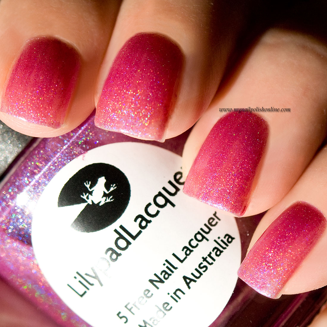 Holo Friday – LilipadLacquer Blooming Violets